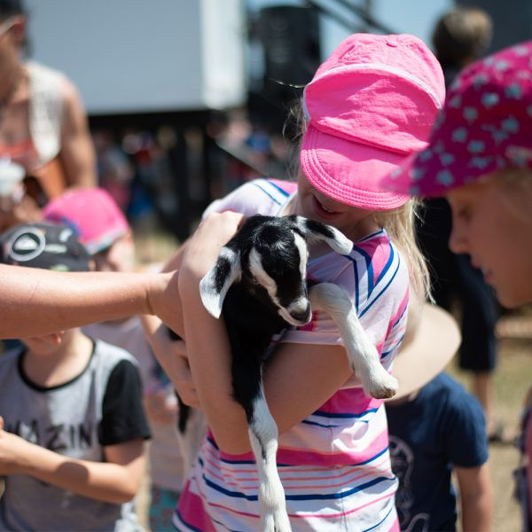 Girl wearing a pink cap holding a black and white baby goat